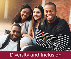 Diversty and Inclusion Collections